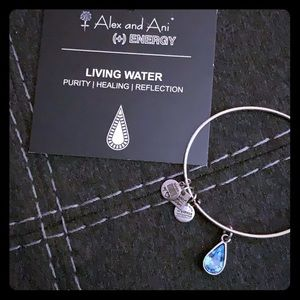 Living Water Alex and Ani - Silver